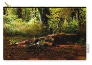 Autumn Dawn - East Haddam Carry-all Pouch