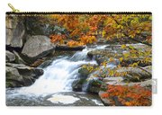 Autumn Falls Carry-all Pouch