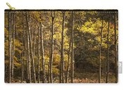 Autumn Forest Scene With Birches In West Michigan Carry-all Pouch