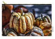 Autumn Glow Carry-all Pouch by Caitlyn  Grasso