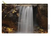 Autumn Gold And Waterfall Carry-all Pouch by Leland D Howard