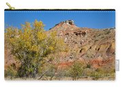 Autumn In Palo Duro Canyon 110213.119 Carry-all Pouch