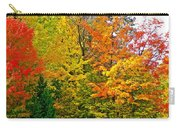 Autumn In Southwest Michigan Carry-all Pouch