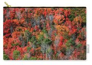 Autumn In The Wasatch Range Carry-all Pouch