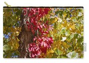Autumn Leaves In Palo Duro Canyon 110213.97 Carry-all Pouch