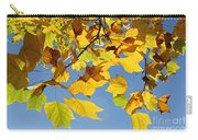 Autumn Leaves Of The Tulip Tree Carry-all Pouch