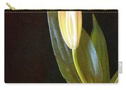 Autumn Lily Carry-all Pouch