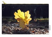 Autumn Oak Carry-all Pouch