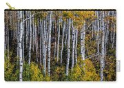 Autumn On Mcclure Pass Carry-all Pouch