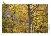 Autumn Orange Forest Colors At Hager Park No.1189 Carry-all Pouch