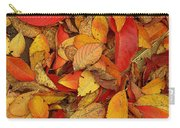 Autumn Remains Carry-all Pouch