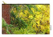 Autumn Splendor 14  Carry-all Pouch