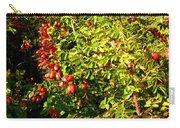 Autumn Splendor 5 Carry-all Pouch