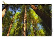 Autumn Sunlight Cast On Majestic Green Oregon Old Growth Forest  Carry-all Pouch
