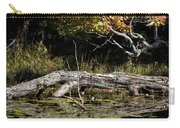 Autumn Swamp Carry-all Pouch