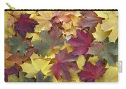 Autumn Sycamore Leaves Germany Carry-all Pouch
