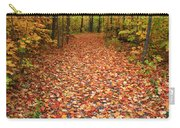 Autumn Walk In Ohio Carry-all Pouch