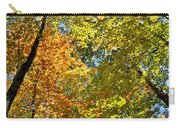 Autumn Woods Sky View Carry-all Pouch