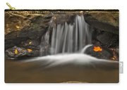 Autumns Stream Carry-all Pouch by Susan Candelario