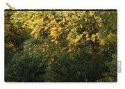 Autumn's Wondrous Colors 4 Carry-all Pouch