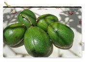 Avacados Carry-all Pouch