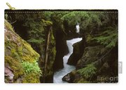 Avalanche Creek Glacier National Park Carry-all Pouch