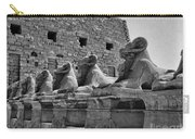 Avenue Of Sphinxes Carry-all Pouch
