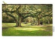 Avery Island Oaks Carry-all Pouch by Scott Pellegrin