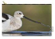 Avocet Feeding Carry-all Pouch