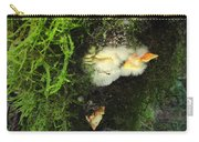 Awe Inspiring Fungi Three Carry-all Pouch
