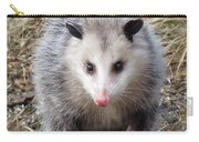 Awesome Possum Carry-all Pouch