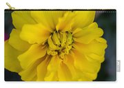 Ayz - A Yellow Zinnia Carry-all Pouch