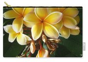 Aztec Gold Plumeria Carry-all Pouch