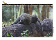 Baboon Sleeping Carry-all Pouch