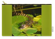 Baby Alligator Card Cut Carry-all Pouch