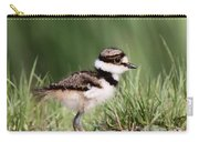 Baby - Bird - Killdeer Carry-all Pouch