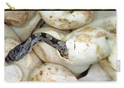 Baby Black Rat Snake Carry-all Pouch