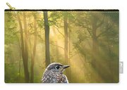 Baby Blue In Morning Fog Sunlight Carry-all Pouch