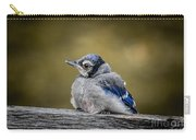 Baby Blue Jay Carry-all Pouch