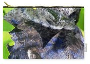 Baby Bluejay Peek Carry-all Pouch by Karen Wiles