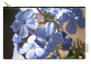 Baby Blues  Carry-all Pouch