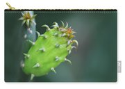 Baby Cactus - Macro Photography By Sharon Cummings Carry-all Pouch