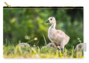 Baby Duckling In The Morning Light Carry-all Pouch