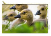 Baby Ducklings Carry-all Pouch
