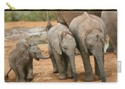 Baby Elephant Trio Carry-all Pouch