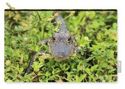 Baby Gator Carry-all Pouch by Adam Jewell