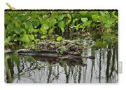 Baby Gators Carry-all Pouch