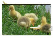 Baby Geese-mayer Lake-savannah Carry-all Pouch