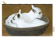 Baby Goats Lying In Food Pan Carry-all Pouch
