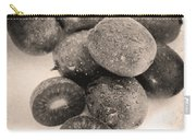 Baby Kiwi Distressed Sepia Carry-all Pouch